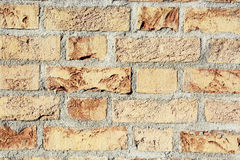 Orange brick wall Royalty Free Stock Image