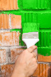 Orange brick wall painted with green color Stock Images