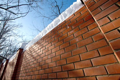 Orange brick wall in park Royalty Free Stock Images