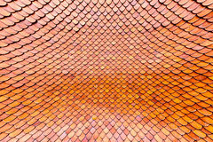 Orange brown clay roof surface Stock Images