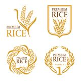 Orange brown paddy rice premium organic natural product banner logo vector design vector illustration