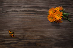 Orange, brown, spotty, tiger butterfly on a background of yellow flowers - calendula. Royalty Free Stock Photo