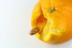 Orange and bullet. Bullet shoot through orange on white background Royalty Free Stock Image