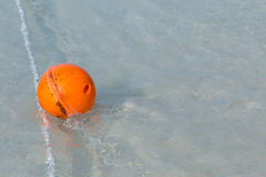 Orange buoy Stock Photography