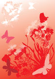 Orange butterflies and flowers Stock Photos