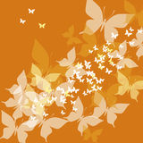 Orange butterfly. Vector illustration of orange butterfly Royalty Free Stock Image