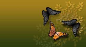 Orange butterfly confronted. An orange butterfly confronted by a pair of black ones stock illustration