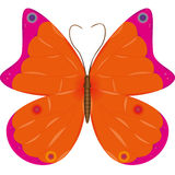 Beautiful Orange Butterfly. Orange butterfly isolated on white background stock illustration