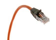Orange cable - 2. Orange cable with RJ-45 jack closeup view Stock Image