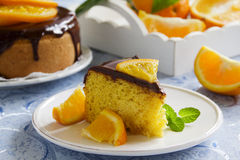 Orange cake with chocolate Stock Images