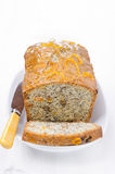 Orange cake with poppy seeds, dried apricots, walnuts Royalty Free Stock Images