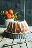 Orange cake on wooden table and dark background stock photo