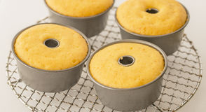 Orange Cakes in Tins. Royalty Free Stock Image