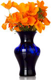 Orange California Poppy's In Blue Vase. Flower Arrangement Of Orange California Poppy's In Blue Vase Royalty Free Stock Photos