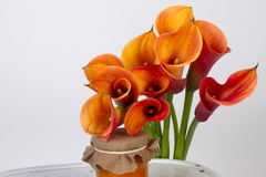 Orange Calla lilies (Zantedeschia) with marmalade Royalty Free Stock Photo