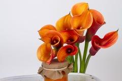 Orange Callalilien (Zantedeschia) mit Marmelade lizenzfreies stockfoto
