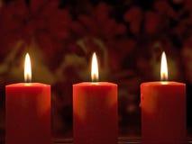 Orange candles. Three orange candles with flower background Stock Photo