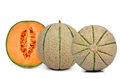 Orange cantaloupe melon Stock Images