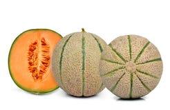 Orange cantaloupe melon Stock Images