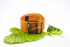 Orange canvas belt Stock Photo