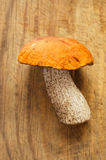 Orange-cap boletus mushroom on  wooden board Royalty Free Stock Image