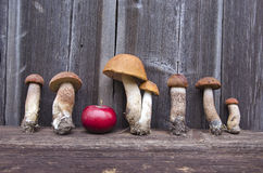 Orange cap boletus and red apple on old wooden background Royalty Free Stock Photo