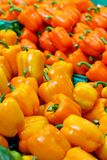 Orange capsicum for good diet Stock Photos