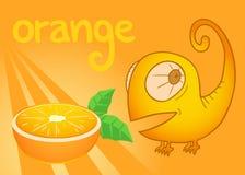 Orange card Royalty Free Stock Image