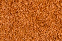 Orange carpet Royalty Free Stock Photos