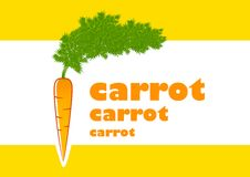 Orange carrot Stock Photography
