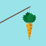 Orange carrot on stick Stock Photos