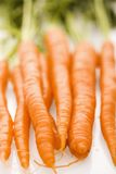 Orange carrots. Royalty Free Stock Images
