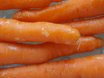 Orange carrots vegetables Royalty Free Stock Photography