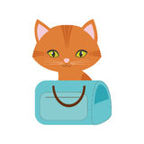 Orange cat green eyes blue pet carrier bag travel Stock Photography
