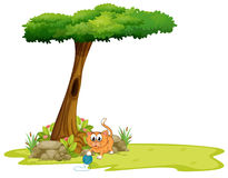 An orange cat playing under the tree Royalty Free Stock Photo