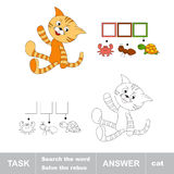 Orange cat. Task and answer Royalty Free Stock Photography