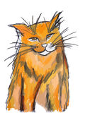 Orange cat Royalty Free Stock Photography