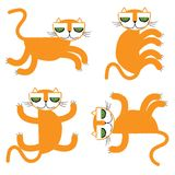 Orange cats  illustration Stock Images
