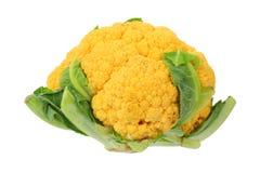 Orange cauliflower Royalty Free Stock Images