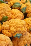 Orange Cauliflower Stock Image