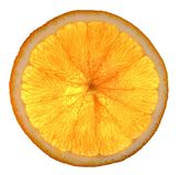 Orange cells Royalty Free Stock Photos