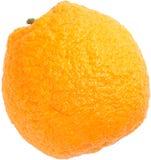 Orange cellulite skin Royalty Free Stock Image