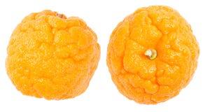 Orange Celluliteschale Lizenzfreie Stockbilder