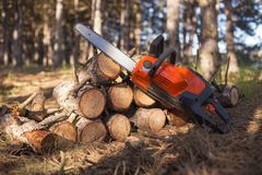 Orange chainsaw is clad on firewood stacked. Up by a hill against the backdrop of a pine forest Royalty Free Stock Image