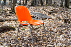 Orange chair in the woods. An ornate orange chair sits empty in a shaded area with spring leaves decorating the forest stock photography