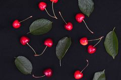 Orange cherry berry with green leaves on a dark background royalty free stock photo