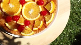 Orange and cherry pie on a checked litter for picnic in a spring time. stock video footage