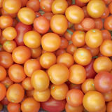 Orange cherry tomatoes Stock Photos