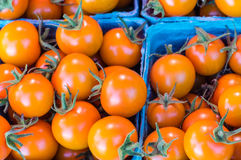 Orange cherry tomatoes at the market Stock Images