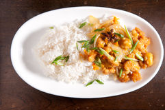 Orange chicken and rice. Spicy and tangy chicken glazed with orange over white rice with onion Royalty Free Stock Photos